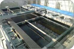 干潟実験水槽