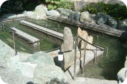 管路式流水発生装置