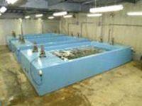 FRP活魚水槽